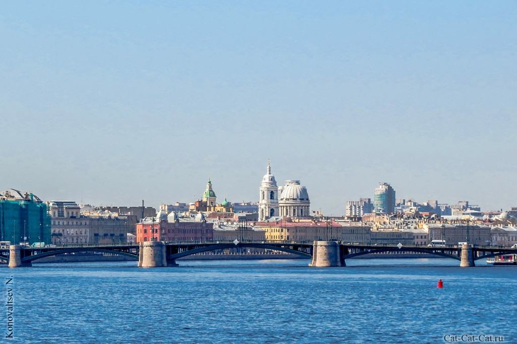 Биржевой мост через Неву (Санкт-Петербург)