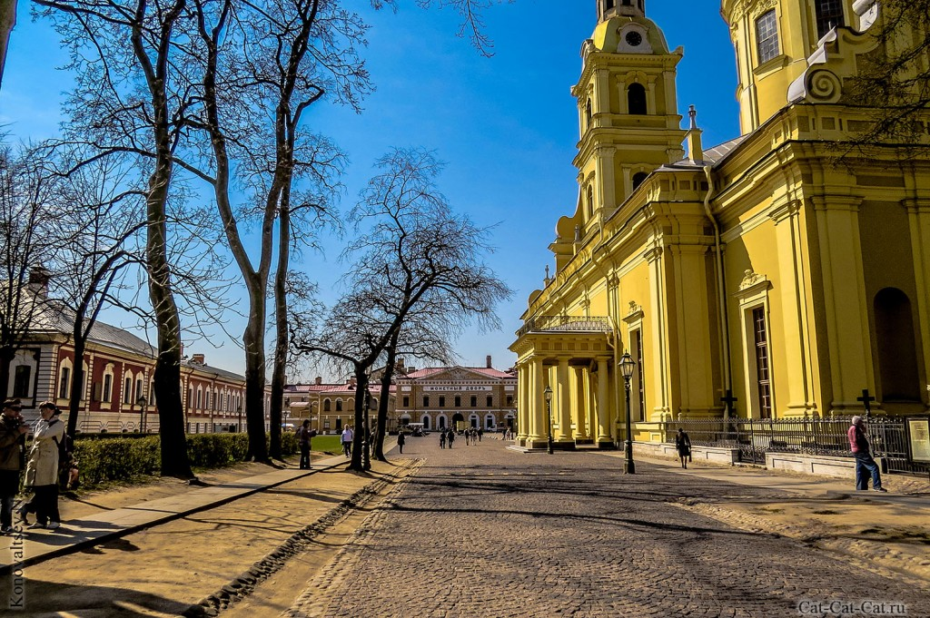 Петропавловский собор (Санкт-Петербург)