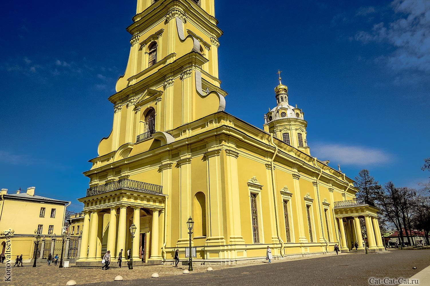 Петропавловский собор петербург картинки сейчас